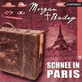 Morgan & Bailey 11: Schnee in Paris