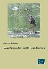 Vogelfauna der Mark Brandenburg