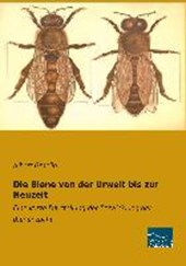 Die Biene von der Urwelt bis zur Neuzeit