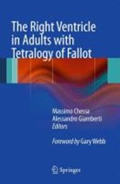 The Right Ventricle in Adults with Tetralogy of Fallot |  |