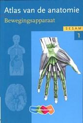 Atlas van de anatomie  deel 1 Bewegingsapparaat
