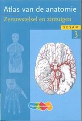 Atlas van de anatomie deel 3 Zenuwstelsel en zintuigen