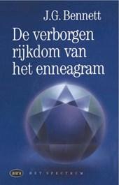 Verborgen rijkdom van het enneagram