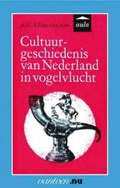 Vantoen.nu Cultuurgeschiedenis van Nederland in vogelvlucht