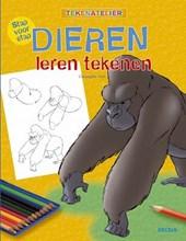 Stap voor stap dieren leren tekenen- Hart
