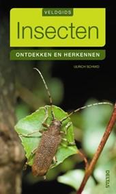 Veldgids insecten - Ontdekken en herkennen
