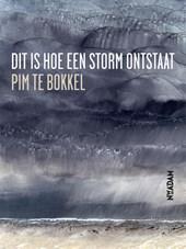 Dit is hoe een storm ontstaat
