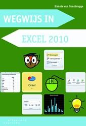 Wegwijs in Excel 2010