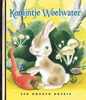 Gouden Boekjes Konijntje Woelwater Luxe