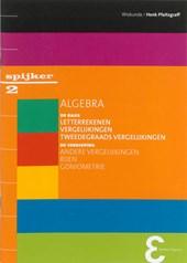 Spijkerreeks Algebra