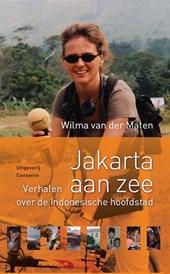NOS-correspondentenreeks Jakarta aan zee