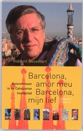 NOS-correspondentenreeks Barcelona, amor meu Barcelona, mijn lief