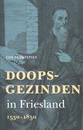 Doopsgezinden in Friesland