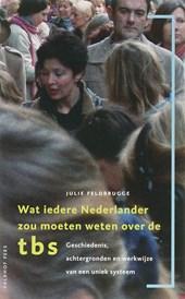 Wat iedere Nederlander zou moeten weten over de TBS