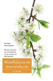 Mindfulness en stressreductie