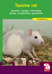 Over Dieren De tamme rat
