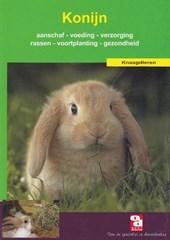 Het konijn