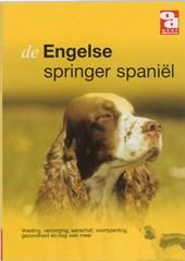 De Engelse springer Spaniel
