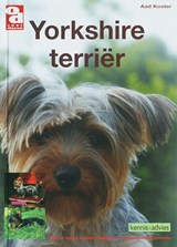 Yorkshire terrier | A. Koster |