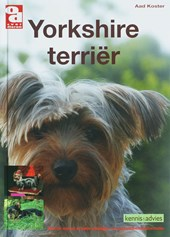Over Dieren Yorkshire terrier