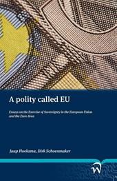 A polity called EU