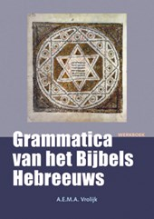 Bijbels Hebreeuws werkboek