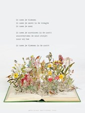 Plint Poeziekaarten Navulset 'Ik noem je bloemen' J. Hanlo