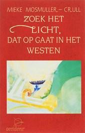 Zoek het licht dat opgaat westen