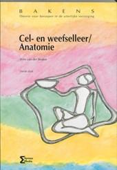 Bakens Cel- en weefselleer / Anatomie