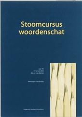 Stoomcursus woordenschat