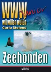WWW-junior Zeehonden