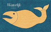 Waterlife |  |