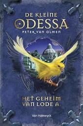 De kleine Odessa Het geheim van Lode A