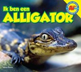 AV+ Alligator | Karen Durrie |