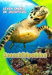 Zeeschildpadden, Leven onder de Zeespiegel