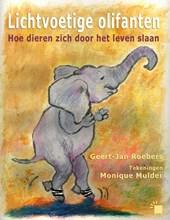 Lichtvoetige olifanten