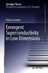 Emergent Superconductivity in Low Dimensions | Diane Ansermet |