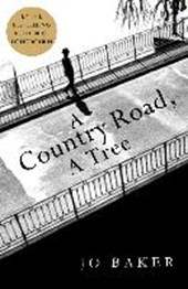Jo Baker - A Country Road, A Tree