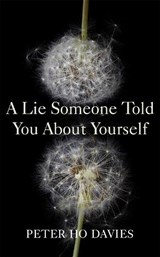 A Lie Someone Told You About Yourself | Peter Ho Davies | 9780340980279