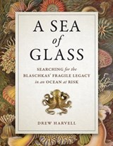 A Sea of Glass | Drew Harvell |