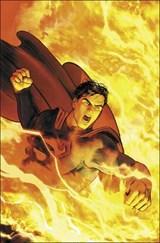 Superman: the final days of superman | Peter J. Tomasi |