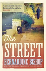 The Street | Bernardine Bishop |