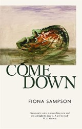 Come Down | Fiona Sampson | 9781472155160