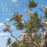 Goats in Trees Kalender 2021 | auteur onbekend | 9781839220210