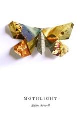 Mothlight | Adam Scovell |
