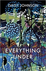 Everything under | Daisy Johnson | 9781910702345