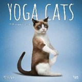 Yoga Cats 2020 Square Wall Calendar | Inc Browntrout Publishers | 9781975412258