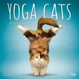 Yoga Cats Kalender 2021 | Browntrout | 9781975418960