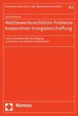Wettbewerbsrechtliche Probleme kooperativer Energiebeschaffung | Kerstin Richter |