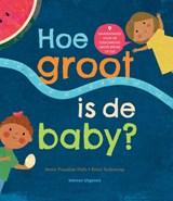 Hoe groot is de baby? | Smriti Prasadam-Halls | 9789048317103
